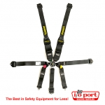 SFI 16.6 Hybrid II Harness, Schroth
